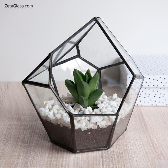 SweetSuiteBlog - Kit para plantar en un terrario de ZetaGlass